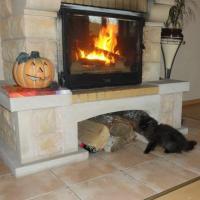 kot przy kominku
