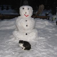 winter_balwan1-jpg