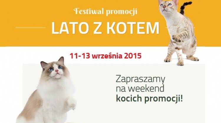 promocja karm dla kota