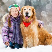 Jak zadbać opsie łapy zimą
