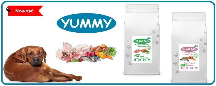 Karmy Yummy – smakowitość wróżnych kombinacjach